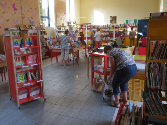 dans-la-bibliotheque